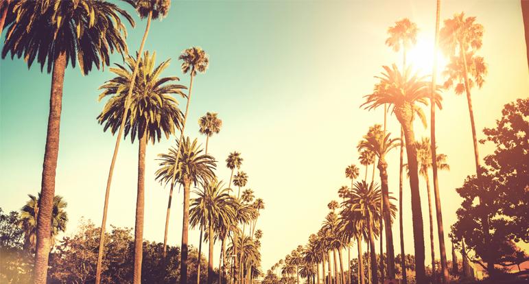 Programa de Verão da California Language Academy